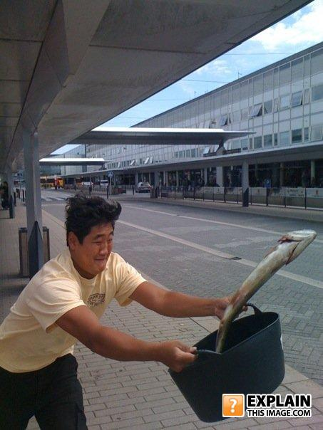 - Korean guy who throws a fish in an airport?