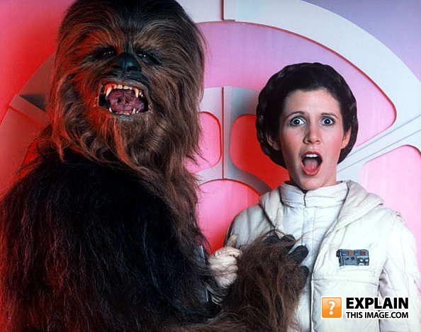 - And then Chewbacca discovered that princess Leia i