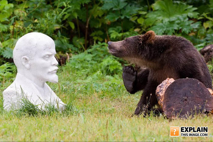 - putin tranqualized a bear, i'll liberate the prole