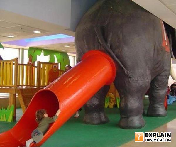 Elephant_slide
